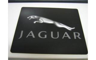 Jaguar Muismat
